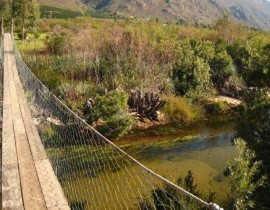 Die Vlei swing bridge and river